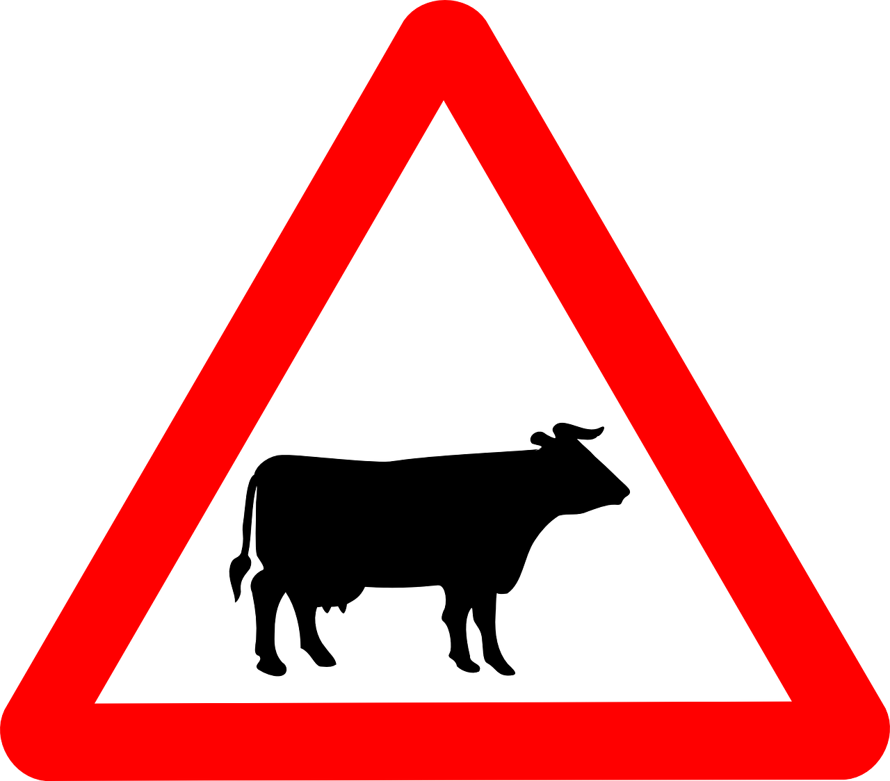cattle_crossing